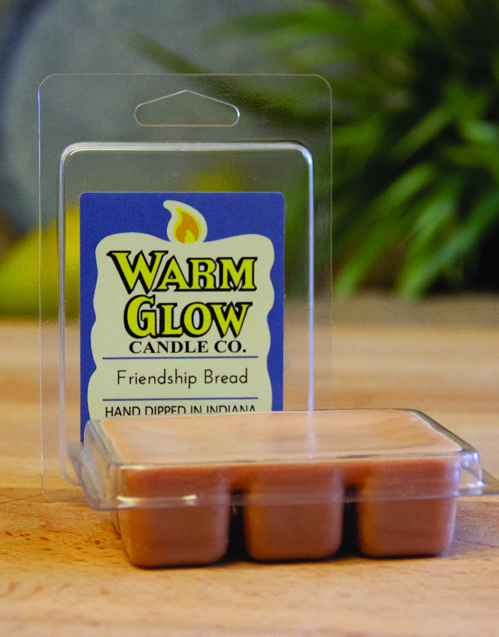 Friendship Bread wax melts
