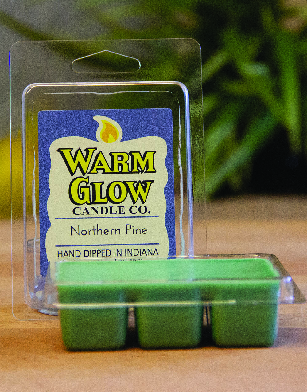 Northern Pine Scented Melt