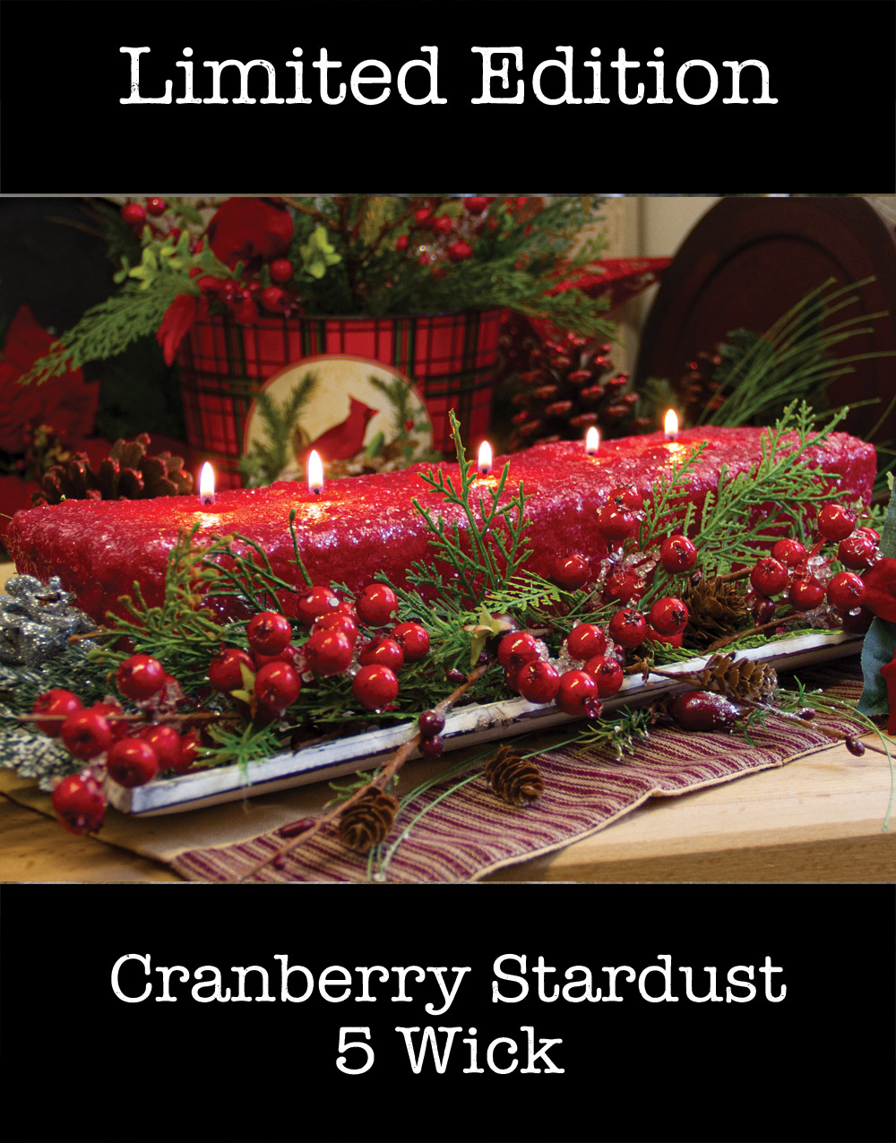 Holiday Edition 5 Wick Loaf Candle – Cranberry Stardust