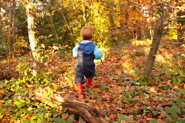 Toddler running through Sydenham Woods in Autumn, photographed by Anna Hindocha/Warm Glow Photo