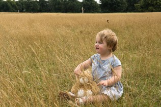 Toddler girl in Bushy Park, Teddington in autumn photographed by Anna Hindocha/Warm Glow Photo
