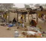 village-market-i-think