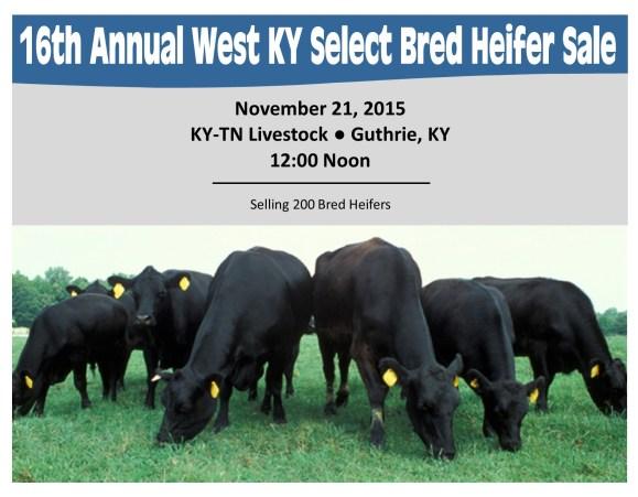 West KY Bred Heifer Sale