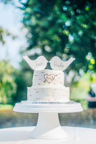 Wedding Cake with birds and rustic details