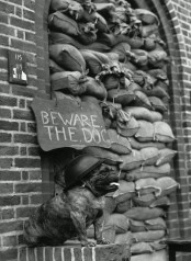 KEEPS POINT, WWII
