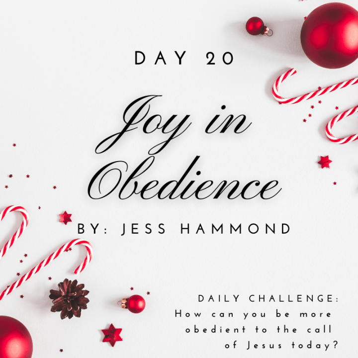 DAY 20: Joy In Obedience