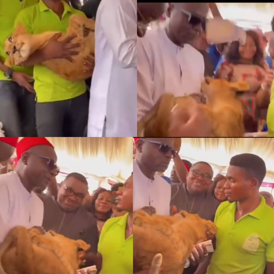 """""""Are they dedicating Odumeje?""""- Comic actor, Okon Lagos reacts to trending video of a man arriving an event with a cub being carried after him"""