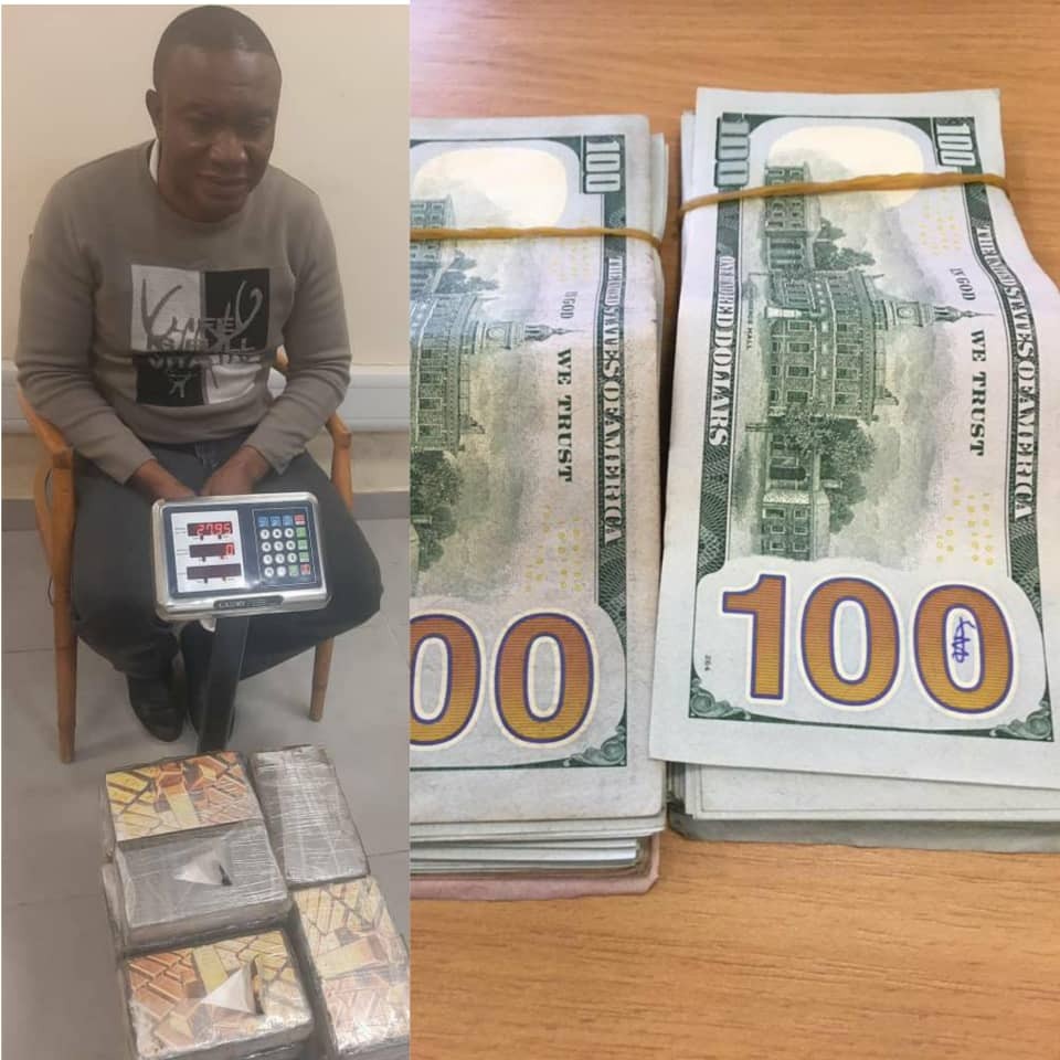 NDLEA intercepts N8billion cocaine, arrests Brazil based drug kingpin at Lagos airport and seizes $24,500 offered as bribe to compromise investigation (photos)