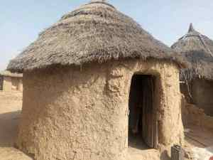 Photos of primary school using hut as classroom in Gombe State sparks outrage