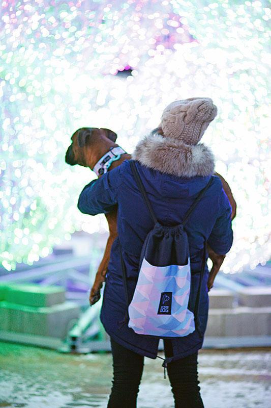 Z psem do galerii handlowej