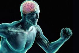 bieganie mózg