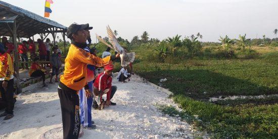 Komunitas Penggemar Burung Merpati Lombakan Adu Balap