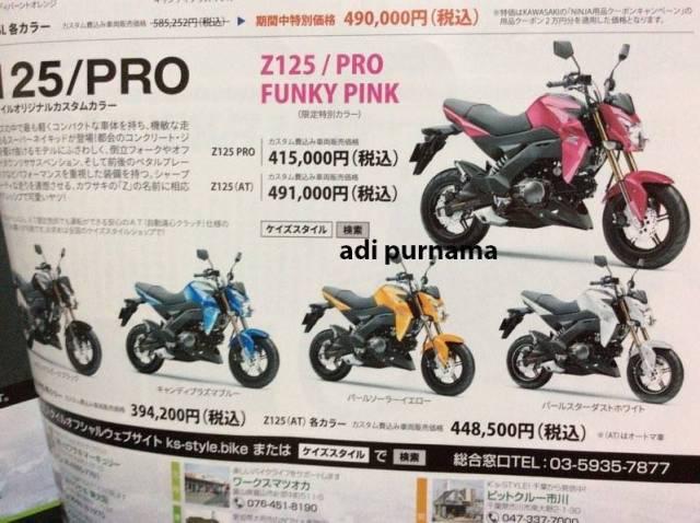 kawasaki z125 pro pink