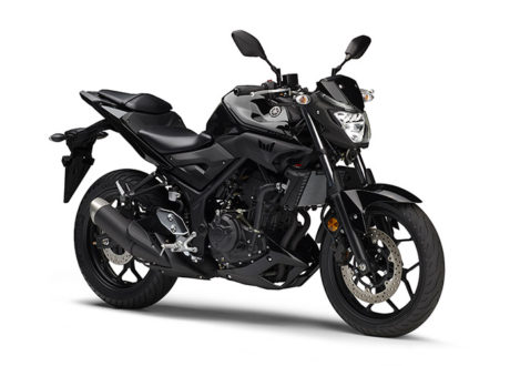 Yamaha MT-25 Full Black