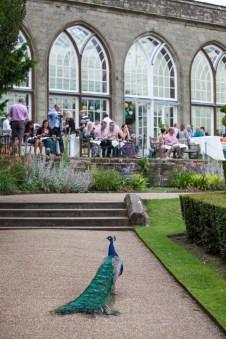 Warwick Castle Gardens