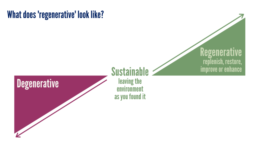 graph showing degenerative vs regenerative behaviour with sustainability leaving the environment as found