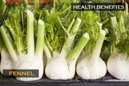 Buy Wasabi Fennel Capsules Now