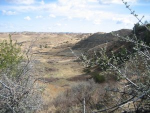 View  - Caprock Coulee Hike