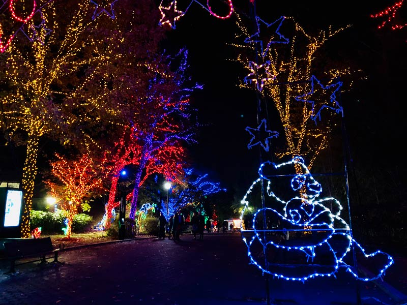 Zoo Lights Smithsonian National Zoo