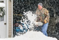 Rick Wulf cleans driveway in Arlington Tuesday.