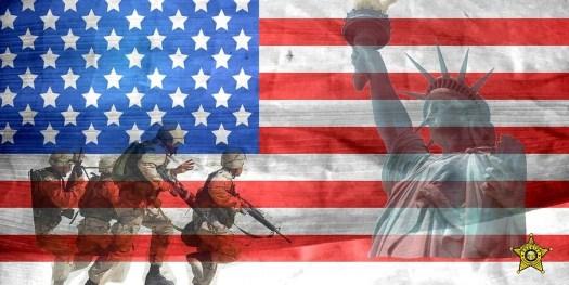 veterans day logo