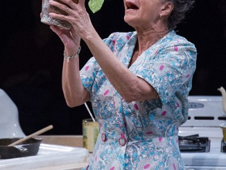 """Lizan Mitchell dominates the stage as Lena Younger in""""A Raisin in the Sun""""at Arena Stage at the Mead Center for American Theater in Southwest, running through May 7. (Photo by C. Stanley Photography)"""