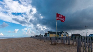 A 'No Swimming' flag flies on the beach in Kill Devil Hills in the Outer Banks of North Carolina on September 11, 2018. - Streams of cars clogged roads leading away from the coast of North and South Carolina on Tuesday as residents began fleeing ahead of the arrival of Hurricane Florence, a powerful Category 4 storm barreling towards the eastern US states. (Photo by Alex Edelman / AFP/Getty Images)
