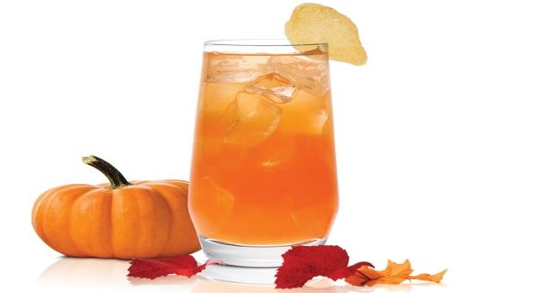 SKYY Infusions Ginger's Pumpkin Spice Cocktail