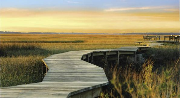"""At Amelia Island, there is an emphasis on  """"harmony with nature.""""  (Courtesy Photo)"""