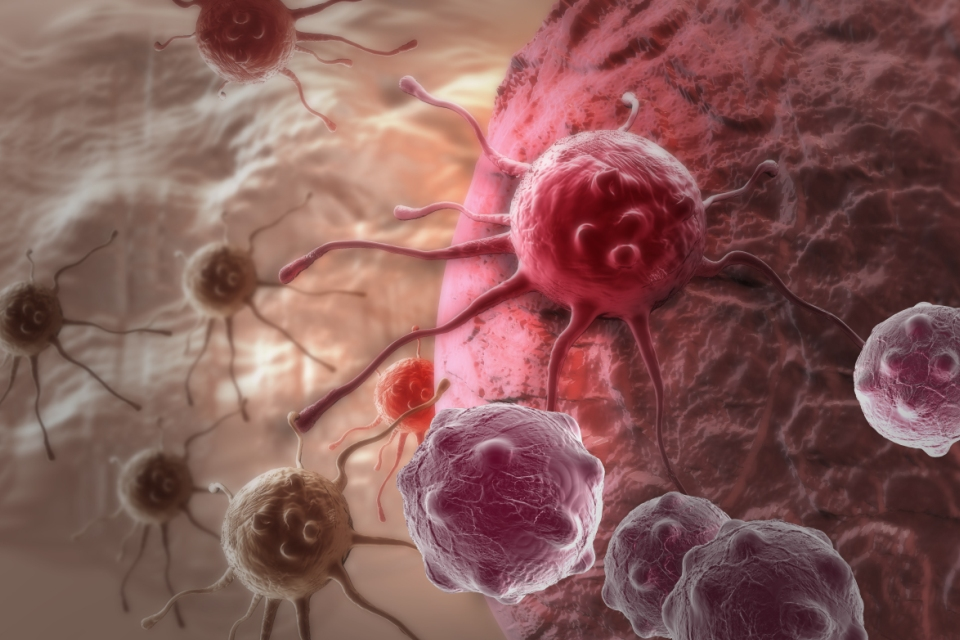The Shift In The Prevalent Rate Of Different Variants Of Cancers