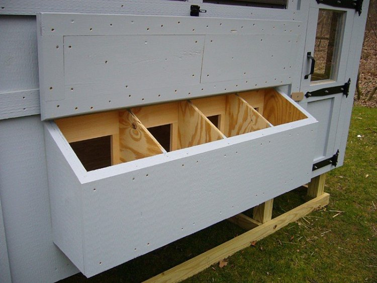 Chicken Co-Op Nesting Boxes