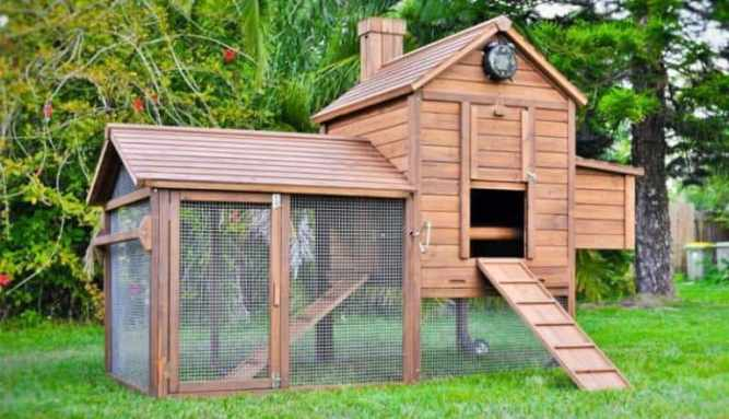 Chickens Roosting: A Taj Mahal Backyard Poultry Coop