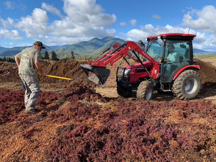 Harvest 2018 Photo Album - Troon Vineyard in Oregon's Applegate Valley