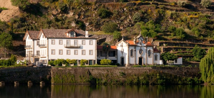 """Wine In the Time of Coronavirus, Part 49: """"The Most Expensive Viticulture in the World"""" (Legendary Douro Releases from Symington)"""