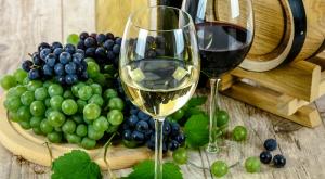 Cara Sukses Budidaya Buah Anggur