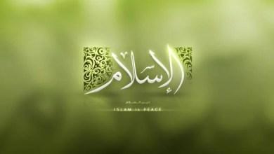Photo of اسلام پوهنه او مطالعه