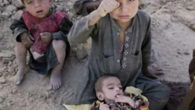 Photo of فقر او غربت څرنګه له منځه يوسو؟