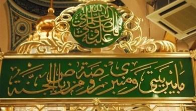 Photo of د رسول الله ص د قبر الهي ساتنه