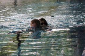 schwimmstar (57)
