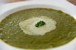 VEGGIES: Veggie cream soup