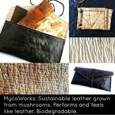 Mycelium in the Textile Industry