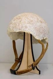 Mycelium R&D project