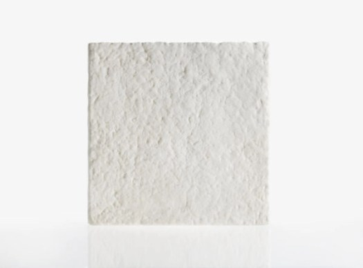commercial Mycelium in Construction