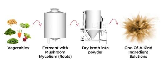 mycoprotein fermentation