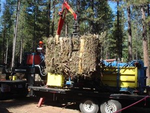 Bale of forest fuel reduction thinnings on Metolius Ranger District of Deschutes National Forest. Photo: Forest Concepts