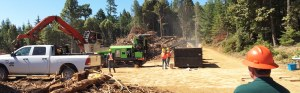 Over 40 attendees participated in biomass machine field demos on July 28