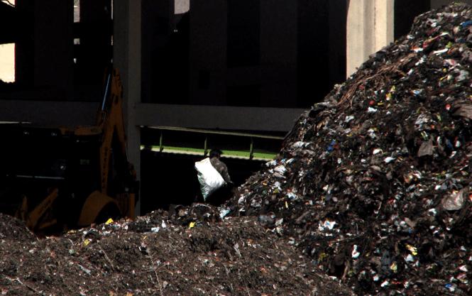 Waste picker at Pimpri Chinchwad's composting plant, India; Photo; Ranjith Annepu, swmindia.blogspot.com