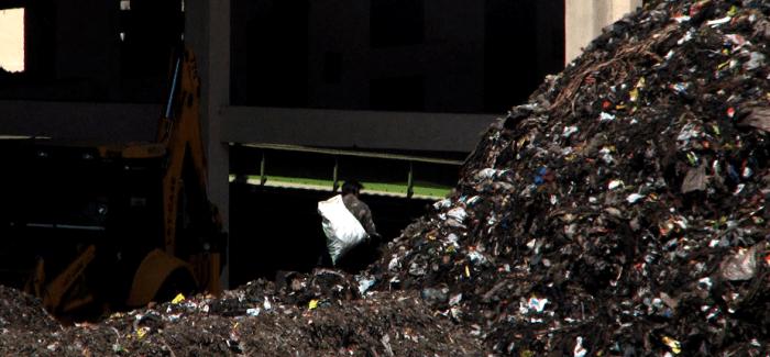 Sonia Dias on the Informal Economy of Waste Pickers