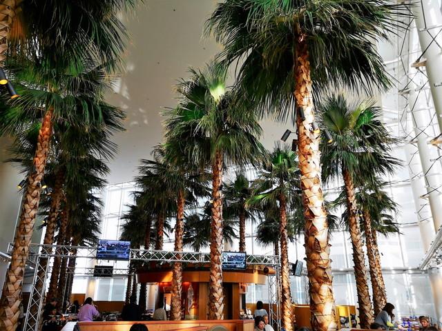 横浜ベイホテル東急『 カフェトスカ 』は都会のアーバンリゾート!誕生日お祝いにもお勧め。