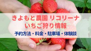 リコリーナいちご狩りの口コミ!(和歌山)予約方法・料金・駐車場まとめ!